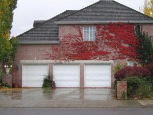 Garage Door Service Coalinga